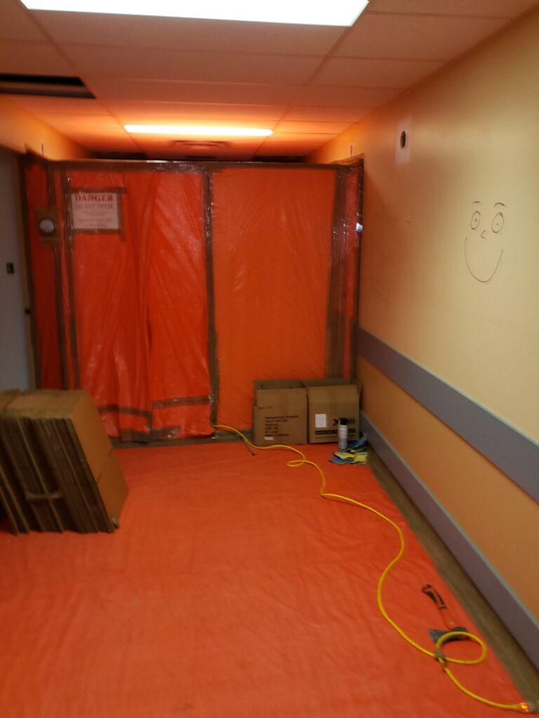 Cottonwood Renovations in the Hallway